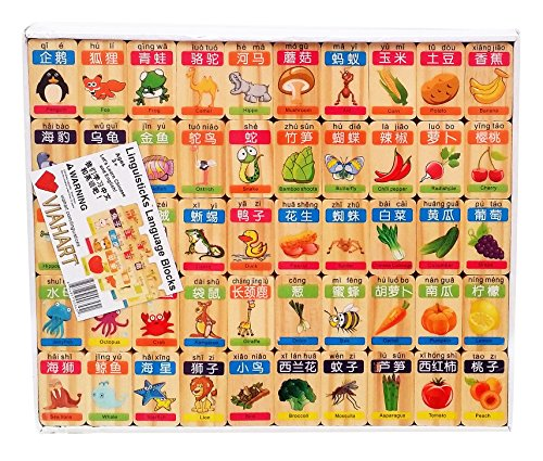 VIAHART Linguisticks 96 Piece Chinese English Language Learning Wooden Blocks - 1