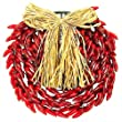 150 Bulbs - Red Chili Pepper Wreath - 14 in. Diameter - Green Wire - 120V