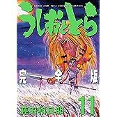 うしおととら 完全版 11 (少年サンデーコミックススペシャル)