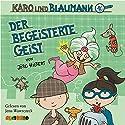 Der begeisterte Geist (Karo und Blaumann 3) Hörbuch von Jörg Hilbert Gesprochen von: Jens Wawrczeck