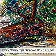 The Wild Reeds - Live in Concert