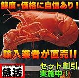 オマール海老(500g)5尾入 【ロブスター 活】 通常便 ランキングお取り寄せ