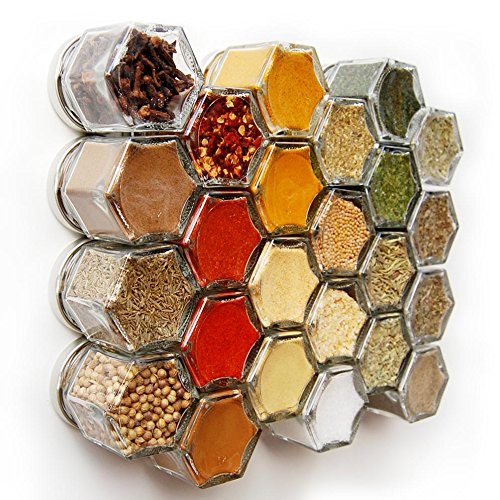 Gneiss Spice Everything Spice Kit: 24 Magnetic Jars Filled with Standard Organic Spices / Hanging Magnetic Spice Rack (Small Jars, Silver Lids) (Honeycomb Shaped Jar compare prices)