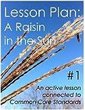 Lesson Plan #1: A Raisin in the Sun (English Edition)
