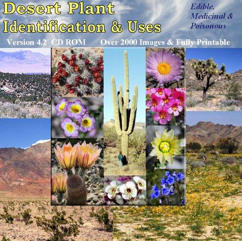 Desert Plant Identification & Uses front-773211
