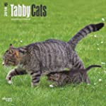 Tabby Cats 2014 Wall