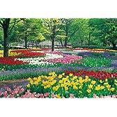 四季の詩 300ピース チューリップの郷 昭和記念公園 (東京) (26cm×38cm、対応パネルNo.3)