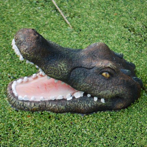 Detailed Open Jaw Crocodile Head For A Pond or Floating Water Feature In The Garden