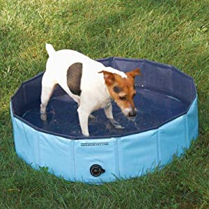 dog paddling pool to keep them cool in hot summer days. Black Bedroom Furniture Sets. Home Design Ideas