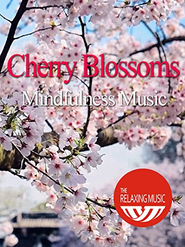 Cherry Blossoms Mindfulness Music