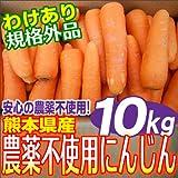 熊本県産無農薬 人参 10kg箱 【規格外品】