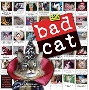 Bad Cat 2012 Wall Calendar Workman Publishing