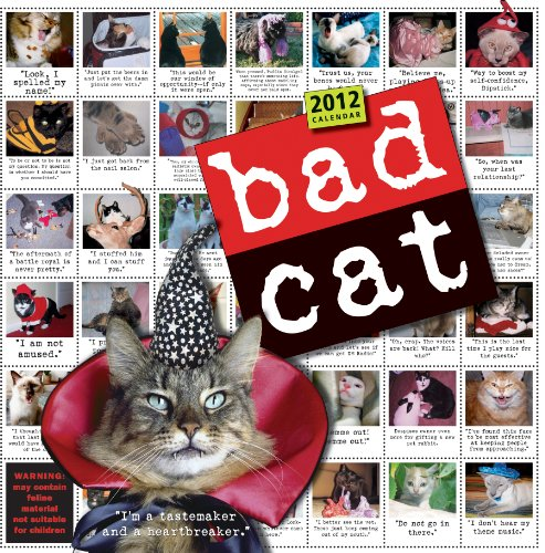 Bad Cat 2012 Wall Calendar