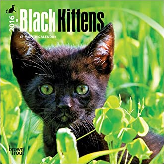 Black Kittens 2016 Mini 7x7 written by Browntrout Publishers