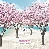 ���܂���T�[�t�T�C�h(���Y�����)(DVD�t)