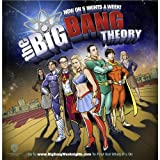 041 The Big Bang Theory 24x25 Silk Print Poster Seide Plakat