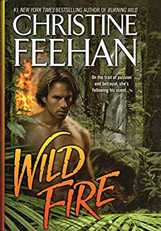 book cover of Wild Fire