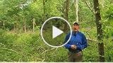 Scott Bestul's Hunting Tip: Find a Buzz Cut, Find...