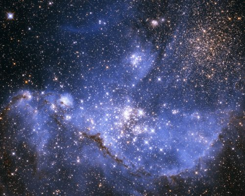 Space Telescope Photo Infant Stars In The Small Magellanic Cloud Nasa Photos 8X10