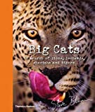 img - for Big Cats: In Search of Lions, Leopards, Cheetahs, and Tigers book / textbook / text book