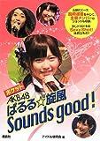 ポケットAKB48ぱるる☆旋風Sounds good!