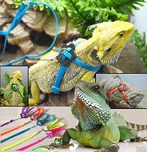 Generic Adjustable Reptile Lizard Harness Leash Adjustable Multicolor Light Soft Fashion (Blue)