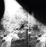 Asunder, Sweet And Other Distress by Godspeed You! Black Emperor (2015)