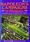 Napoleon's Campaigns in Miniature