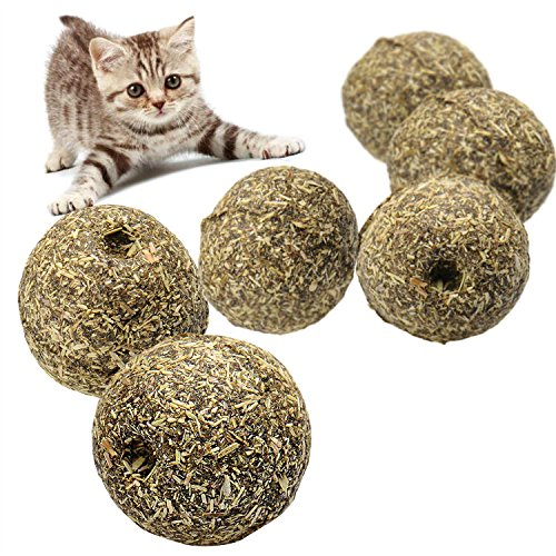 1Pcs-Lovely-Grass-Color-Nature-Cat-Mint-Ball-Play-Toy-for-Pet-Kitten-Coated-with-Catnip
