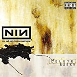 The Downward Spiral [Deluxe Edition] [HYBRID SACD] By Nine Inch Nails (2005-02-07)