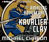 The Amazing Adventures of Kavalier and Clay (Academic / Medical-Wellness)