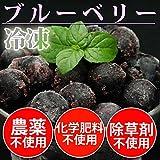 無農薬・無化学肥料 冷凍国産ブルーベリー 500g