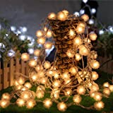 LETOOR 5M String With 40 LED Fairy Decorative Dandelion Lights, Great Decoration for Wedding, Christmas Trees, Holiday, Party and Home (5M, Warm White)