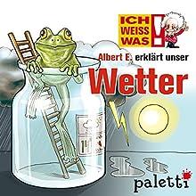 Albert E. erklärt unser Wetter (Ich weiß was) Audiobook by Gerda Leesing Narrated by  N.N.