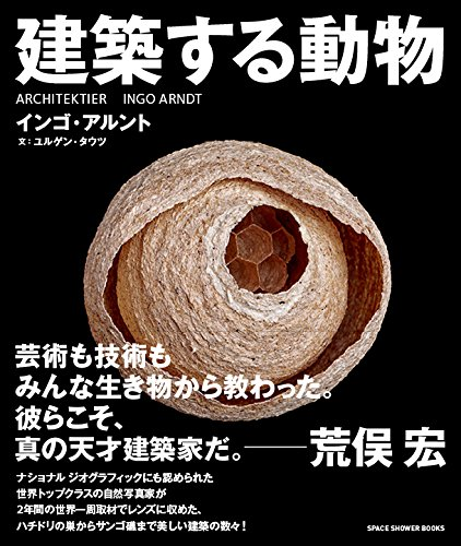 建築する動物 (SPACE SHOWER BOOKs)