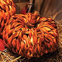Caffco Natural Rattan Woven Pumpkin Small