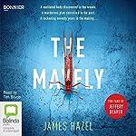 The Mayfly: Charlie Priest, Book 1 | James Hazel
