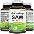 Saw Palmetto Extract Berry Capsules- Hair Loss Treatment For Hair Growth For Women And Men - Prostate Supplement with Beta Sitosterol- DHT Blocker - Natural Acne Skin Care - 500 mg By Nature's Design