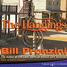 The Hangings Audiobook by Bill Pronzini Narrated by Barry Campbell