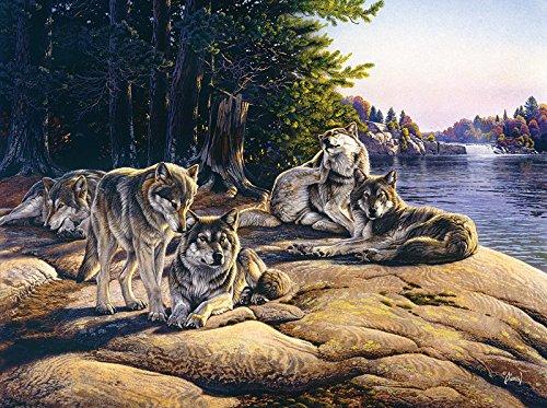 SunsOut Wolf Ridge Jigsaw Puzzle (1000-Piece)