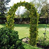 METAL STEEL GARDEN ROSE ARCH. 2.4m TALL. TRAILING PLANTS ROSES RUNNER BEANS