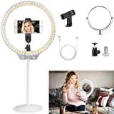 ZOMEI 10 Inch Dimmable LED Ring Light for Selfie Makeup with Mirror, Phone Holder (White) (Color: White 1)