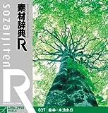 素材辞典[R] 037 森林・木洩れ日