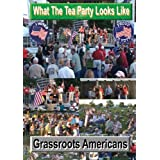 Tea Party: Grassroots Patriot Americans: What The Tea Party Looks Like