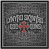 God & Guns by Lynyrd Skynyrd (2009) Audio CD
