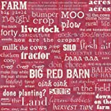 12x12 Ppr Ffa Farm Words 25/pk