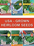 Heirloom Non GMO Vegetable Seeds with High Germination + Online Gardening Class & Bonus 25oz Smoothie Jar. Plant Fresh USA Grown Seeds for Your Organic Kitchen Garden. 100% Satisfaction Guaranteed!