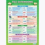 File Extensions ICT Educational Wall ChartPoster in laminated paper A1 850mm x 594mm