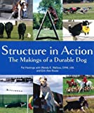 img - for Structure in Action by Pat Hastings (2011-09-01) book / textbook / text book