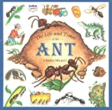 Image of The Life and Times of the Ant